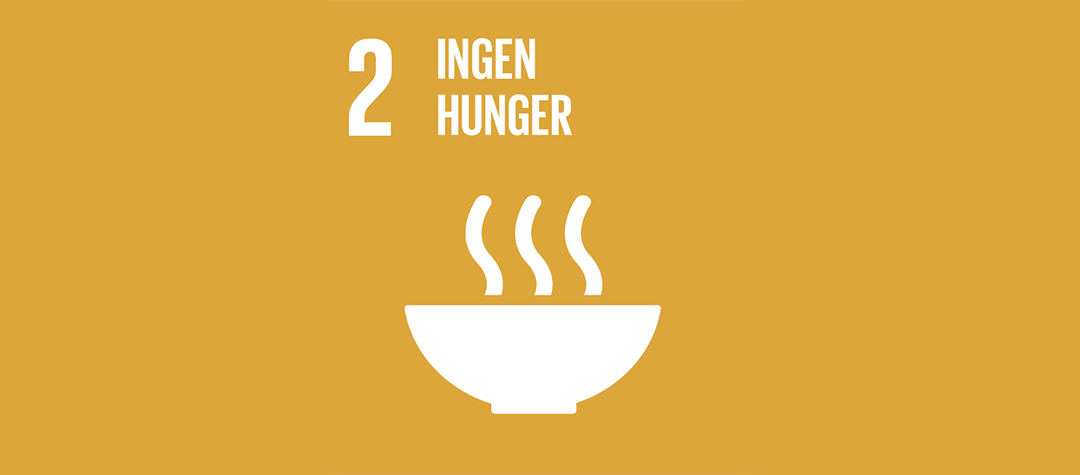 Globala målen nummer 2, Ingen hunger