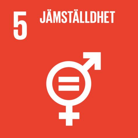 Globala målen 5 - Jämställdhet