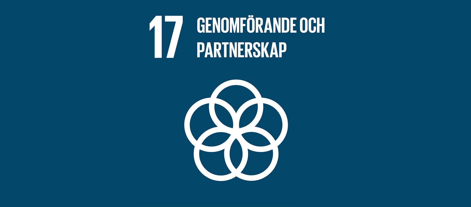 Globala målen 17 - Genomförande och globalt partnerskap