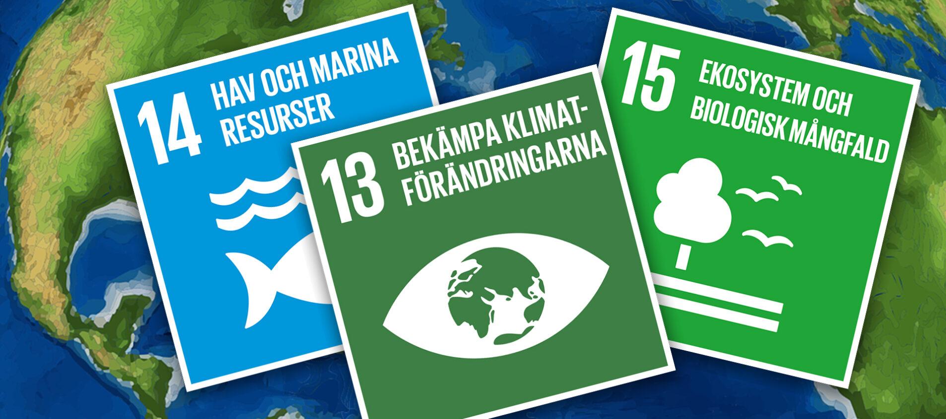 Globala målen tar han om jordklotet